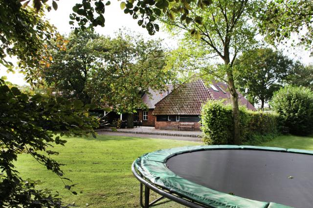 trampoline 001